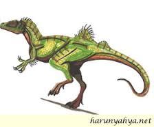 New Scientist'de Dinozor Evrimi Yanılgısı