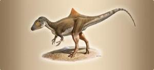 Sahte Tüylü Dinozor Concavenator Corcovatus ve Darwinistlerin Bitip Tükenmeyen Aldatıcı Spekülasyonları