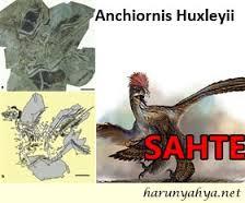 "Yeni Bulunan Fosil Anchiornis Huxleyii""i Ara Fosil Zanneden Zavallı Darwinistler"